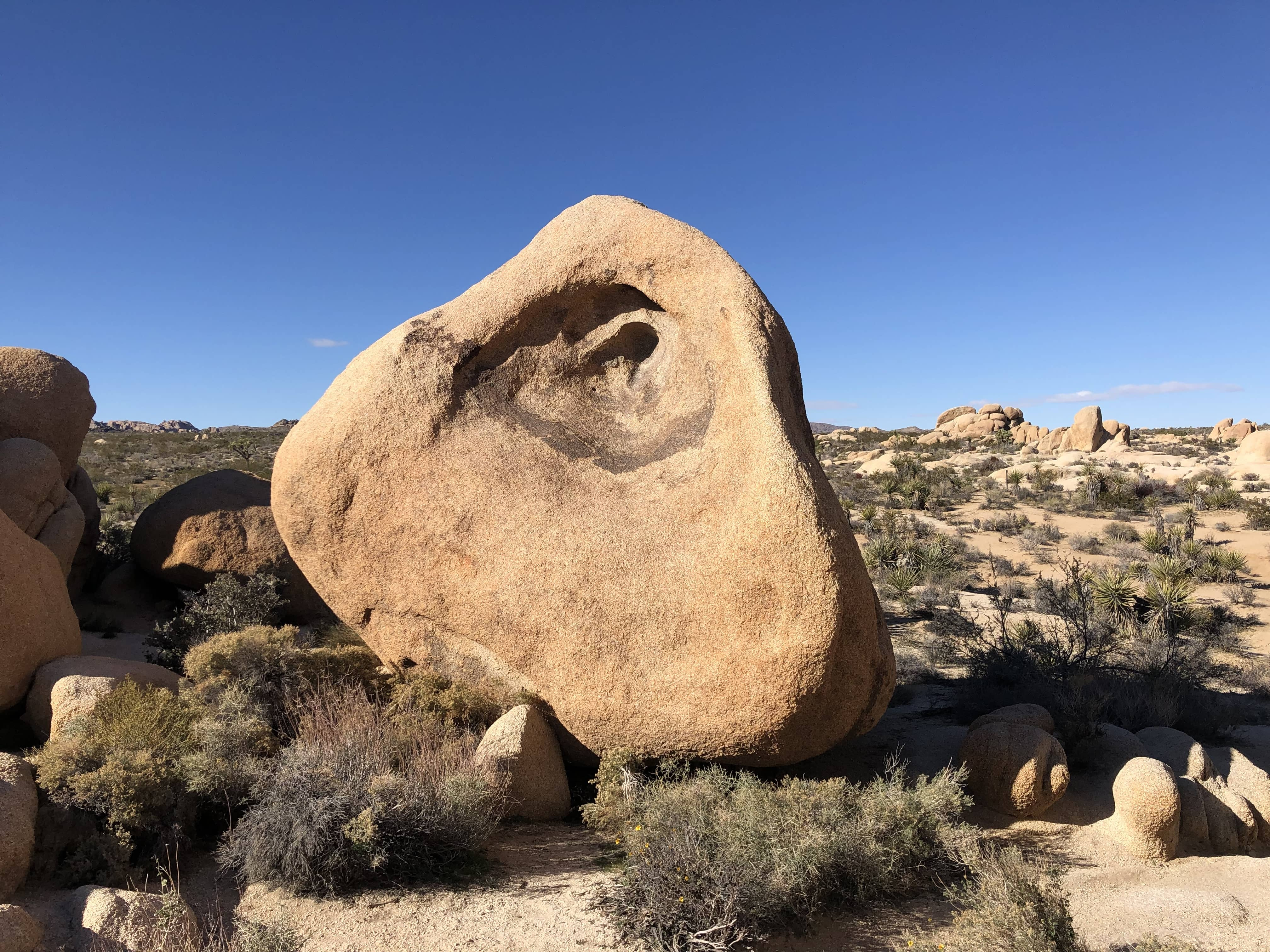 A weird shaped rock in Joshua Tree National Park
