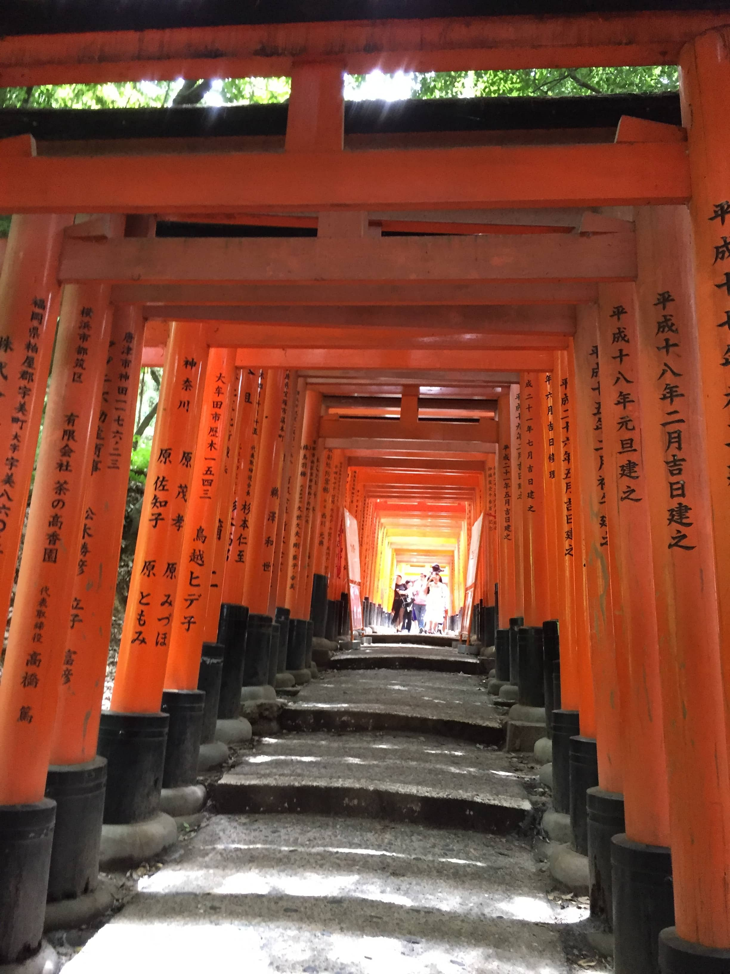 Each of the torii at Fushimi Inari Taisha has been donated by a Japanese business