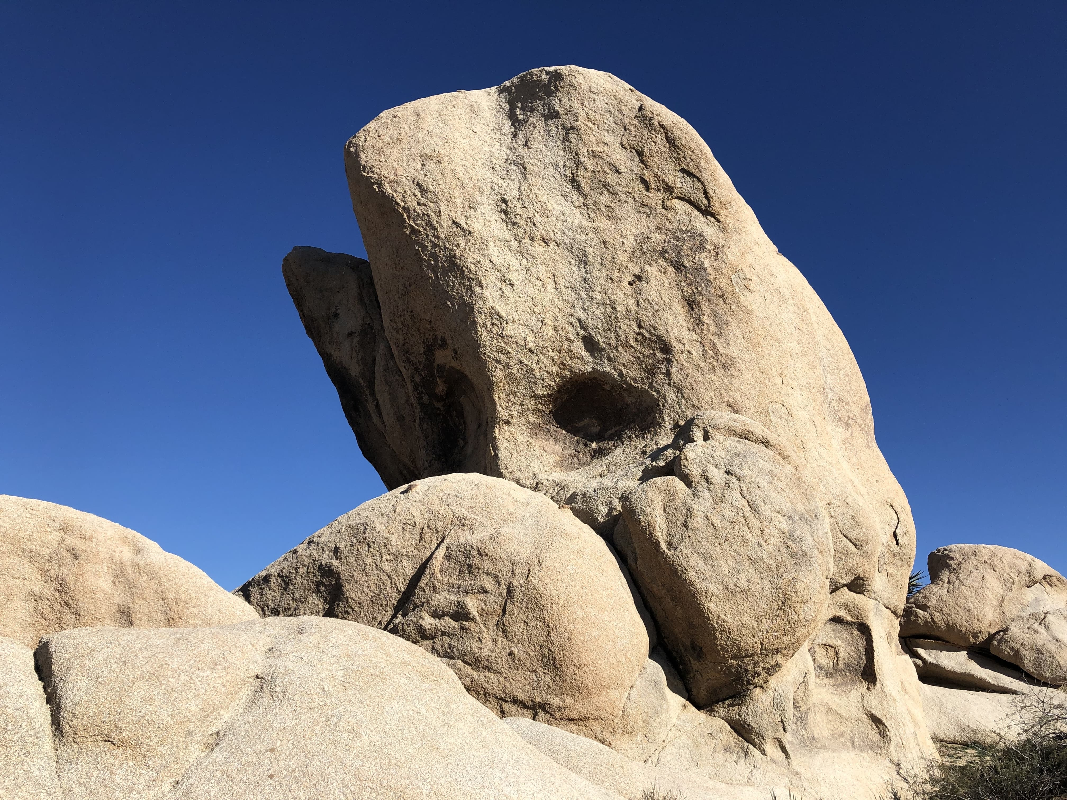 A rock looks like a whale jumping out of the sea in Joshua Tree National Park